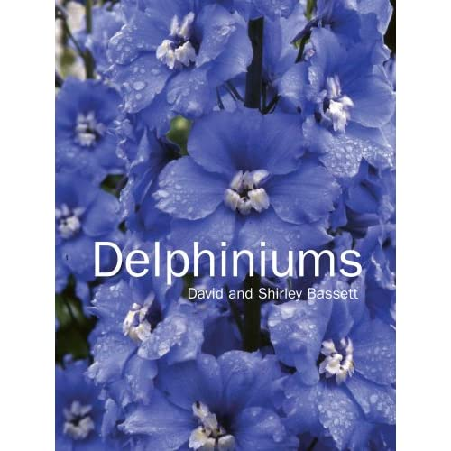 Delphiniums, Bassett, David; Bassett, Shirley