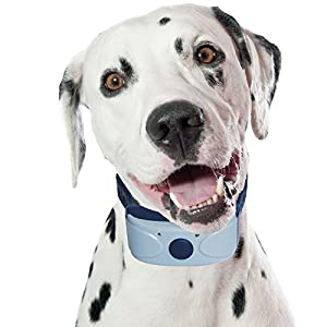 Amazon.com : Our K9 Blue Rechargeable Bark Collar, Uses ...