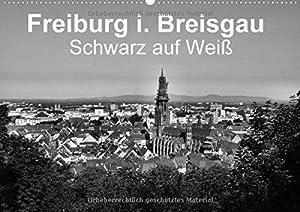Freiburg i. Breisgau Schwarz auf Weiß (Wandkalender 2015 DIN A2 quer): Schwarzweiß Porträt der Stadt Freiburg (Monatskalender, 14 Seiten)