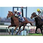 300ピース グラスワンダー '98有馬記念 (26x38cm)