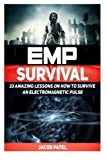 img - for EMP Survival: 33 Amazing Lessons on How to Survive an ElectroMagnetic Pulse (EMP Survival, EMP Survival books, EMP Survival novels) book / textbook / text book