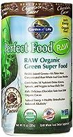 Garden of Life Perfect Food Raw Organic Green Super Food, Chocolate, 570 Gram