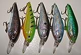 5 Custom Shad Lures - Plugs Crankbaits Bass Fishing Set L5AB