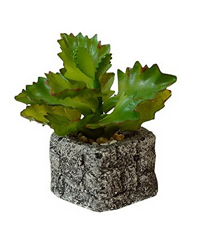 The Artificial Miniature Potted Plant Home Decoration [C]