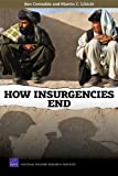 How Insurgencies End