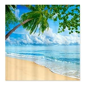Amazon com cafepress beach scene shower curtain standard white