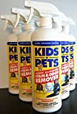 Kids 'N' Pets Stain and Odor Remover, 27.05-Fluid Ounces, by Kids n'Pets