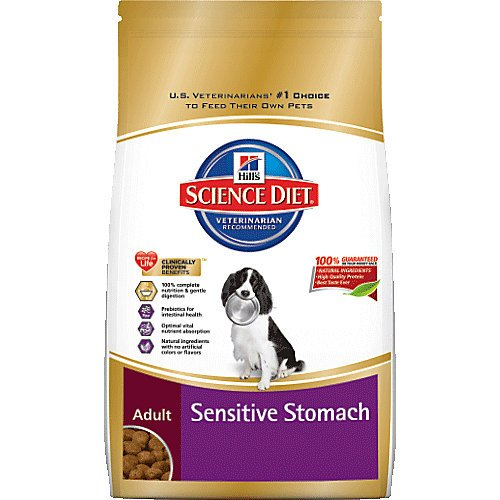 Hill S Science Diet Adult Sensitive Stomach Amp Skin Dry Dog