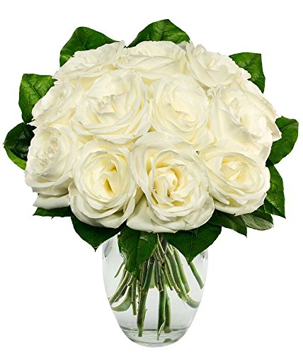 From You Flowers – One Dozen White Roses (Free Vase Included)
