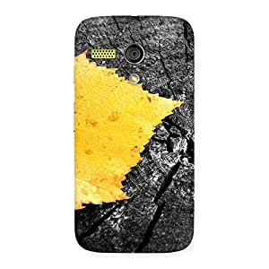 Stylish Lonely Leaf Multicolor Back Case Cover for Moto G