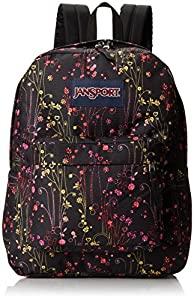 JanSport Superbreak Backpack - 1550cu in Multi Climbing Ditzy, One Size