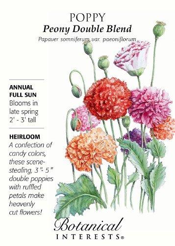 """Peony Double Blend"" Poppy Seeds Heirloom Seeds 600 Seeds"