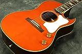 【アウトレット】Gibson / Tamio Okuda CF-100E FC ギブソン アコースティックギター エレアコ CF100E