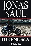 The Enigma (Sarah Roberts Series Book Six)