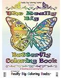 Big Book of Butterflies (Real Super Big Coloring Book)