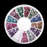 3D 2300pcs Round Nail Art Rhinestone Gems Wheel with Dotting Tool and Glue Nail Art Kit by La Demoiselle