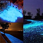 Glow in the Dark Garden Pebbles Stone for Walkway Yard and Decor DIY Decorative Gravel Stones in Blue(200PCS)