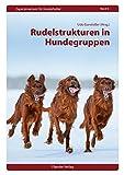 Image de Rudelstrukturen in Hundegruppen (Expertenwissen für Hundehalter)