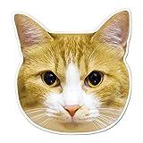 kmag 猫マグネット 茶白ねこ