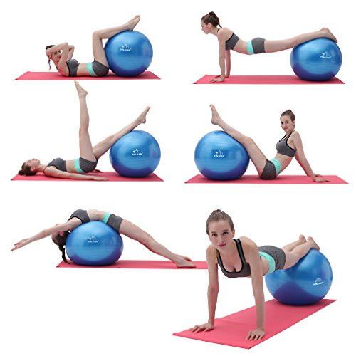 Stability Ball Manual: Anti-burst Exercises Ball Stability Ball Fitness Ball