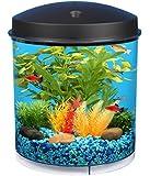 KollerCraft API Aquaview 360 Aquarium Kit with LED Lighting and Internal Filter, 2-Gallon