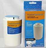 WaterSentinel WSG-1 Replacement Fridge Filter, Fits GE, Hotpoint, Kenmore