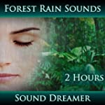 Forest Rain Sounds (2 Hours)