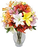 Assorted Royal Lilies without Vase