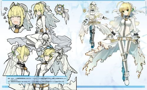 Fate/EXTRA material 初回限定版【書籍】