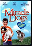 Miracle Dogs [Import]