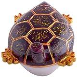 Craft and Craft Handicrafts's Magical Tortoise