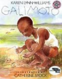 img - for Galimoto (Reading Rainbow Book) book / textbook / text book