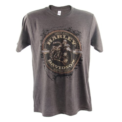 Harley-Davidson Ramstein Off The Wall T-Shirt Mens, XX-Large, Heather Brown