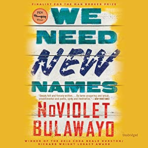 We Need New Names Audiobook