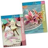 Lisa Slatter & Frances McNaughton Twenty to Make 2 Books Cake Decorating Collection Set Pack (Twenty to Make) (20 to Make) (Twenty to Make Collection) (Sugar Flowers, Sugar Fairies)