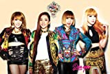 2NE1 Korean Girl Group Music Poster 6946