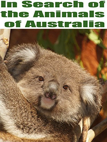 In Search of the Animals of Australia