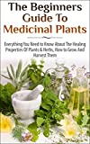 The Beginners Guide to Medicinal Plants: Everything You Need to Know About the Healing Properties of Plants & Herbs, How to Grow and Harvest Them (Medicinal ... Wild Plants, Healing Properties, Medicinal)