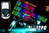 12PC 15 COLOR RGB LED MOTORCYCLE LIGHT KIT REMOTE CONTROL 6 LEDS PER STRIP MILLION COLORS