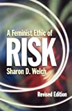 img - for A Feminist Ethic of RISK (Other Feminist Voices) book / textbook / text book