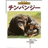 【バーゲンブック】 チンパンジー-どうぶつのおやこ