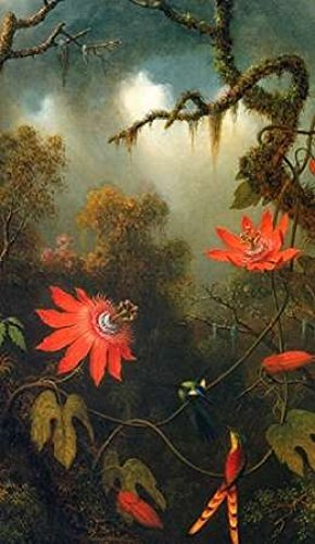 two-hummingbirds-perched-on-passion-flower-vines-poster-print-by-martin-johnson-heade-12-x-18