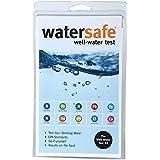 Watersafe WS425W Well Water Test Kit