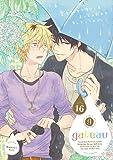 gateau Vol.16 (gateauコミックス)