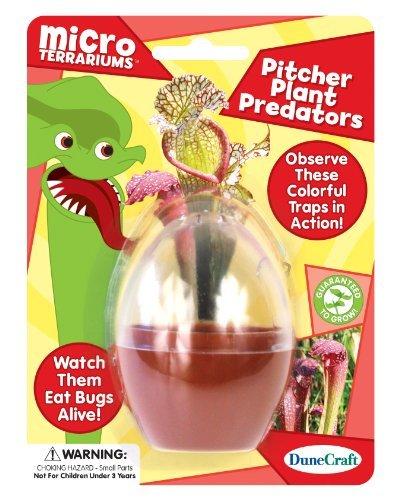 Dunecraft Pitcher Plant Predators Science Kit by DuneCraft (Pitcher Plant Predator compare prices)