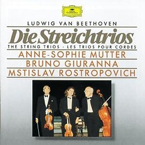 Beethoven: Die Streichtrios (The String Trios)