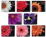 Harold Feinstein Assorted Mini Flower Magnet Set - Fresh Flowers