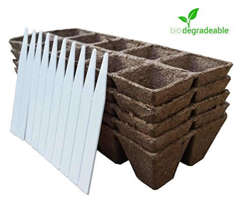 Seed Starter Pots Trays Biodegradable Peat 5 pack - 50 Cells + 10 Plastic Plant Markers (Mint Starter Kit compare prices)