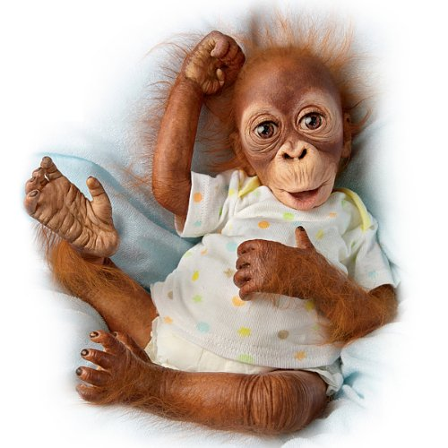 Simons Laurens Baby Babu: 16