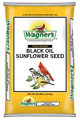 Wagner's 76027 Black Oil Sunflower, 25-Pound Bag (Morning Song Sunflower Seeds compare prices)